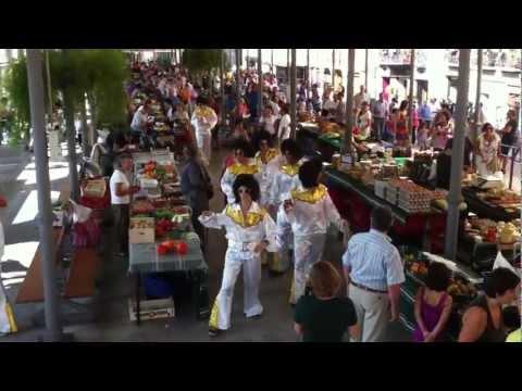 Flash Mob Tolosako Zerkausian 03.MOV