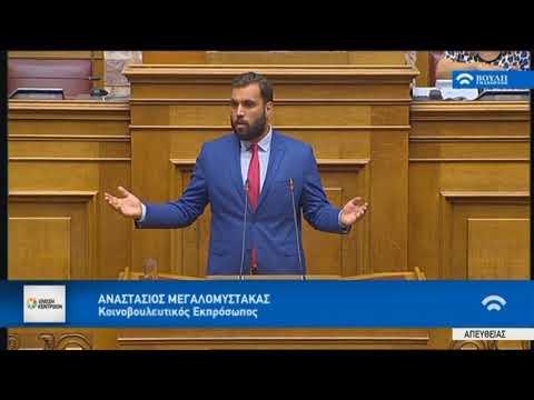 Α. Μεγαλομύστακας / Ολομέλεια, Βουλή / 12-7-2018