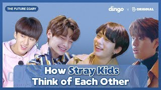 The Reveal Of Secret Diary Of Stray Kids [The Future Diary_EP.05] • ENG SUB • dingo kdrama