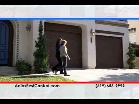 Adios Pest Control | Bee Removal (866) 955-7378