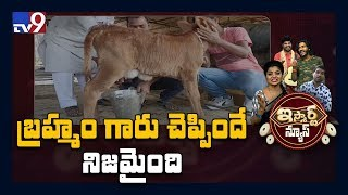 Miracle: Five days calf gives milk in Telangana, shocks ev..