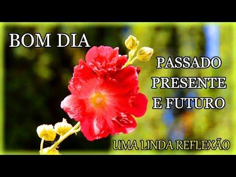Mensagem de Bom Dia / Passado, Presente  e Futuro !
