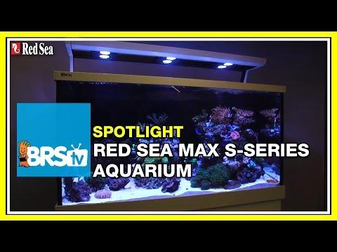 How to setup a complete reef system - Red Sea Max S Aquariums | BRStv Spotlight