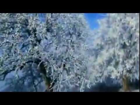 Журга   Подари  — Видео@Mail Ru22