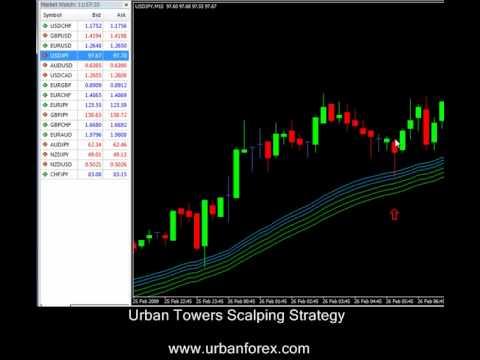 Forex watchers trader program