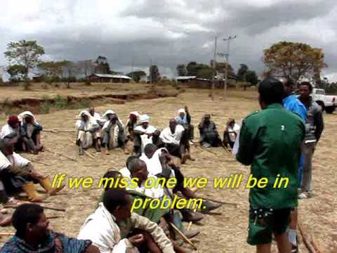 Irrigation in Amhara BodyPartsCode