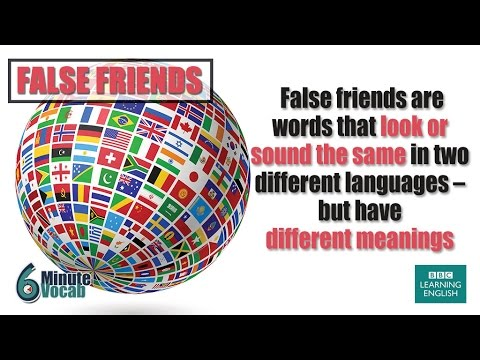 VOCABULARY: Dealing with false friends