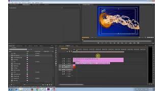 Dựng phim chuyên nghiệp bằng Adobe Premiere Pro Phần 7