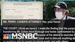 Judge Calls Out Trump, Barr DOJ For Punishing Cohen Over New Book | Rachel Maddow | MSNBC