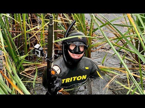Осенняя подводная охота на ВОЛГЕ. Судаки, окуни, щуки.