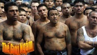 Cuộc áp giải tù nhân lớn và nguy hiểm nhất Nam Mỹ