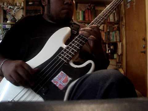 David Raven-Gillies Cordova - Bass Player in Cuautitlán Izcalli