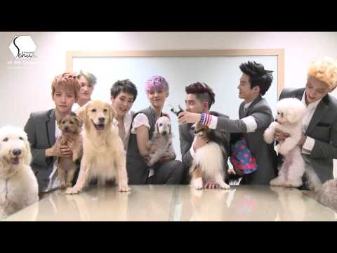 [ThaiSub] KBS Super Dog - EXO by Sehun-Thailand
