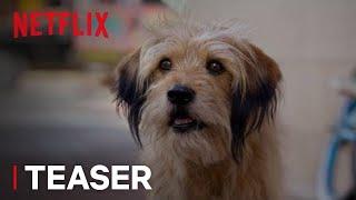 BENJI | Official Teaser [HD] | Netflix