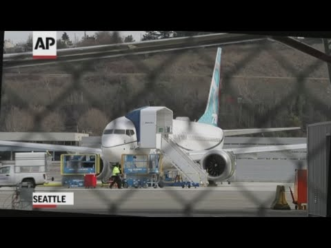 Analyst: FAA acted too slowly grounding planes