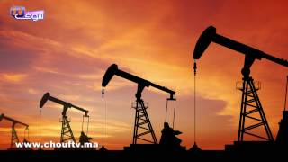 النشرة الاقتصادية : 10 يناير 2017       إيكو بالعربية