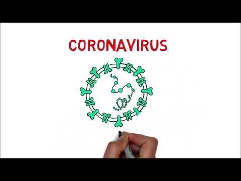 Coronavirus (Origen, Síntomas, Tratamiento, Prevención, Vacuna) CDC   WHO