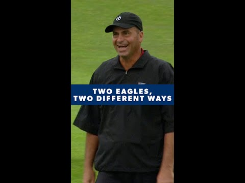 Two VERY different ways to make an eagle ?