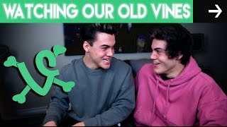 Watching Our Old Vines!