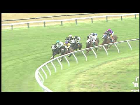 Preakness 2019 horses @LiveShow Today | For Dummies