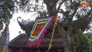 Vietnam Tours | Cảnh Đẹp Linh Thiêng  Đền Mẫu Ỷ La |  Đền Tam Cờ |  Đền Cây Xanh  Tuyên Quang