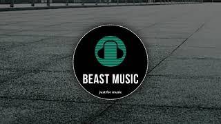Martin Garrix.feat.bonn-no sleep(by beast music)