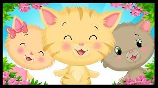 Trois petits chatons et leurs mitaines - Comptines anglaises en français pour les enfants - Titounis