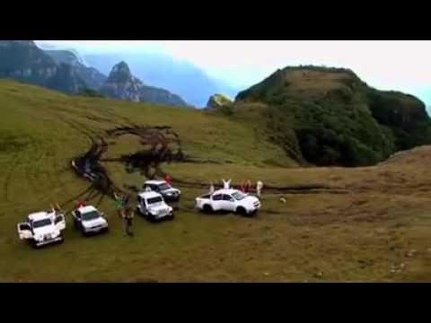 Viaja Brasil, Saga Systems Brasil compartilha essa ideia