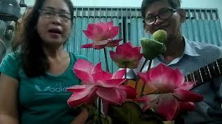 Nhac Sy Huynh Hieu Ca Song Phi Ho Diep :