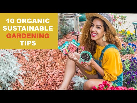 How to Grow a Sustainable & Organic Garden! | 10 Eco Gardening Tips