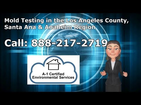 Mold Testing Los Angeles County
