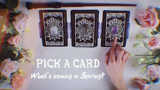 Pick A Card | What to expect for Spring?