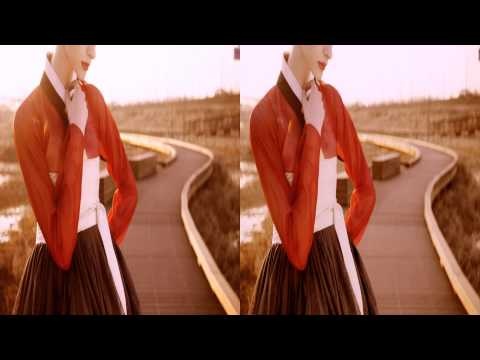 [Korea3DShowcase2013] Hanbok Fly Up 3D by 6.5 STEREO
