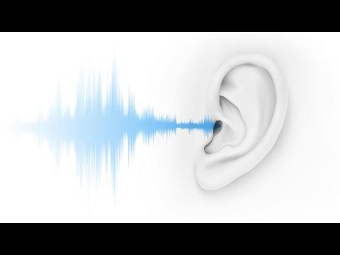 Protégez L'audition De Vos Travailleurs