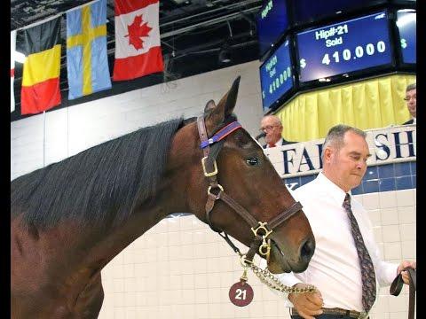 2016 Standardbred Horse Sale