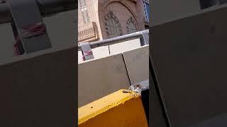 شاهد الطريق الدائرى الاول فى مكة المكرمة حول الحرم     -