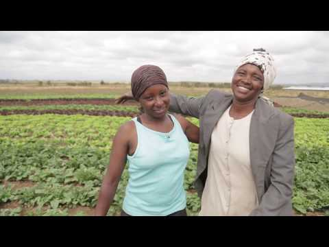 A global partnership for fighting hunger