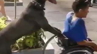 Video of dog pushing wheelchair of specially-abled boy goe..