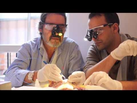 British Institute of Laser Dentistry
