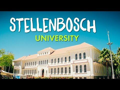 AIFS Auslandssemester an der Stellenbosch University | AIFS Deutschland