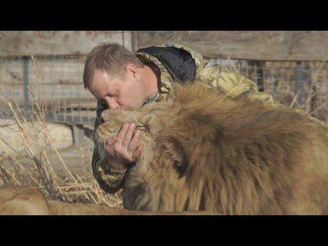 De grootste zoo van Europa is op de Krim: directeur ruziet met Russen, dreigt dieren af te schieten