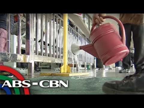 Foot baths inilatag sa NAIA terminals kontra African swine flu