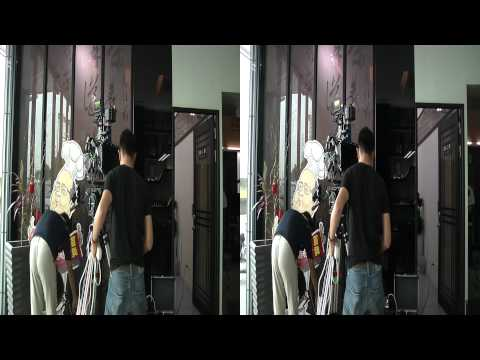 (3DHV)3d mirror rig