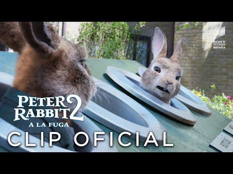 "PETER RABBIT 2 - ""Hora de divertirnos"" Clip en ESPAÑOL | Sony Pictures España"