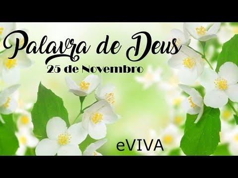 PALAVRA DE DEUS PARA HOJE 25 DE NOVEMBRO eVIVA MENSAGEM MOTIVACIONAL PARA REFLEXÃO DE VIDA