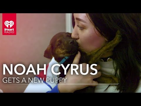 Noah Cyrus Meets Her New Puppy! | iHeartRadio Music Festival
