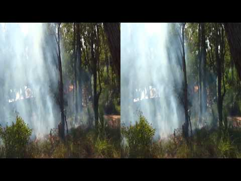 Australian Bush Garden Burn Off in 3D or 2D