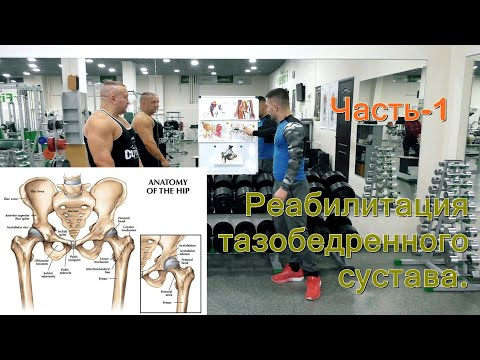 Реабилитация тазобедренного сустава. Часть -1