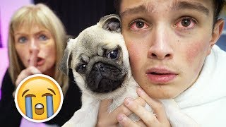 Selling Morgz's New Dog Prank!! **HE CRIED**