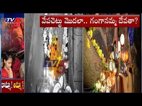 వేపచెట్టులో దేవత వెలసిందంటూ పూజలు చేస్తున్న మహిళలు..!   Tenali, Guntur District   TV5 News